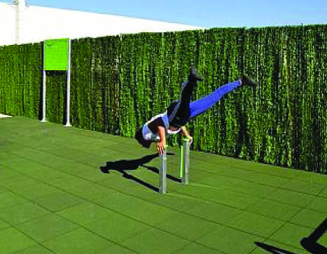 7440 Handstand pole